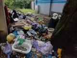 Śmieci w Zielonej Górze walają się wszędzie. Ktoś to w końcu sprzątnie?