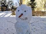 Krakowskie bałwany śniegowe! Małe, duże, ładne, ale i momentami nieco dziwne [ZDJĘCIA]