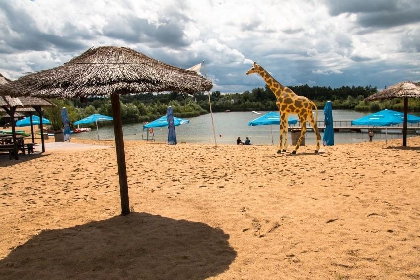 - Kąpielisko znajduje się w Owińskach (12 km od Poznania w...