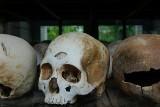 Historia sprzed wieków: Wybrał się na polowanie w okolicy Tarnawy. Nie przeżył