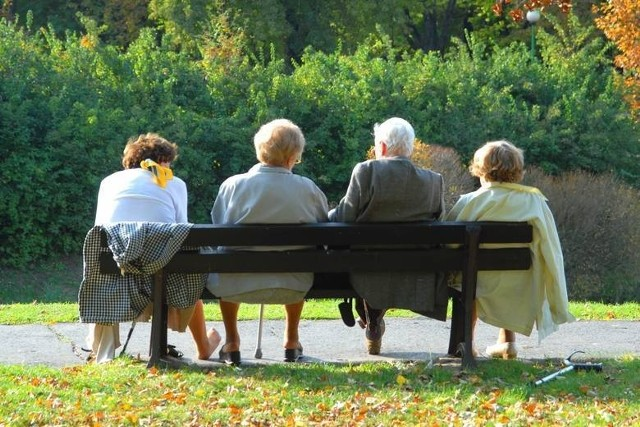 Kancelaria Prezydenta RP informuje, że projekt emerytur stażowych na pewno powstanie. Według najnowszych informacji, uzgodnione zostały już warunki przejścia na emeryturę stażową. Sprawdź, jakie będą zasady.Szczegóły przeczytasz na kolejnych stronach ---->