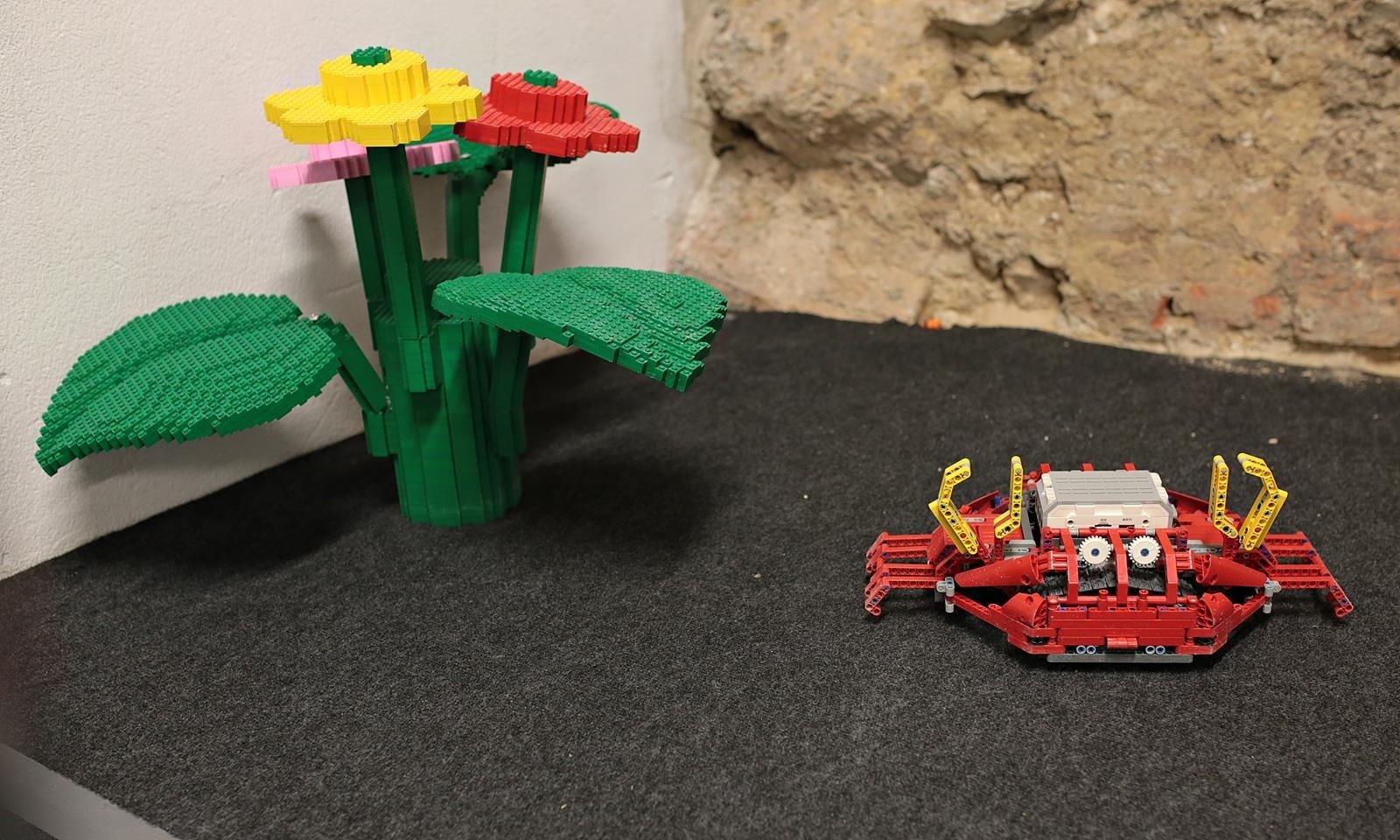 Wystawa Robotów Z Klocków Lego Na Mikołajskiej Zdjęcia Gazeta