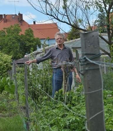 - Sarny potrafią poobgryzać nawet liście na drzewkach owocowych - pokazuje Wacław Gmiąt