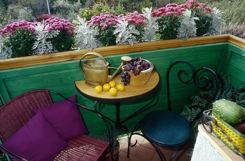 Balkon Zielona Romantyczna Oaza Nowa Trybuna Opolska