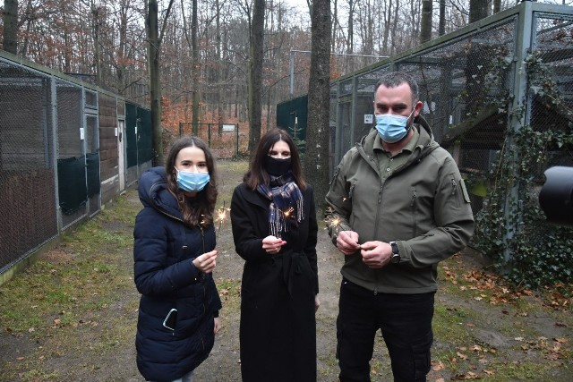 Łódzkie radne Antonina Majchrzak i Monika Malinowska-Olszowy oraz Kamil Polański z Ośrodka Rehabilitacji Dzikich Zwierząt apelują, by zwierzętom zaoszczędzić sylwestrowej traumy.