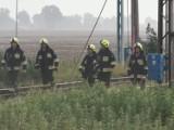 Tragedia na torach w gminie Stare Pole 23-24.07.2021. Pod kołami pociągu towarowego zginął mężczyzna
