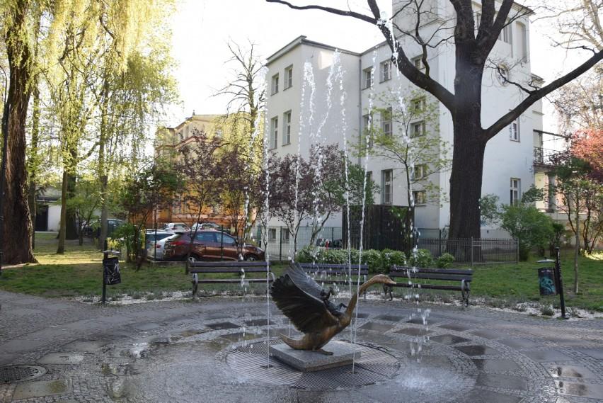 Plac Makusynów w Zielonej Górze - wiosna 2019
