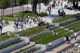 Warszawa: Zmiany w funkcjonowaniu bulwarów wiślanych