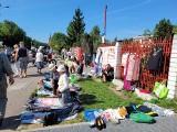 Białystok. Giełda staroci przed Klubem Krąg. Zobacz, jakie skarby sprzedawali ludzie (zdjęcia)