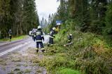 Halny na Podhalu. Strażacy walczą ze skutkami silnej wichury [ZDJĘCIA]