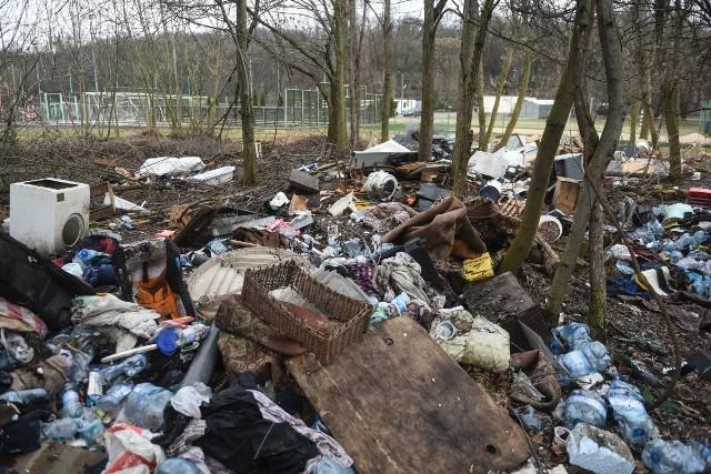 Tuż przy Cytadeli znajduje się olbrzymie wysypisko śmieci