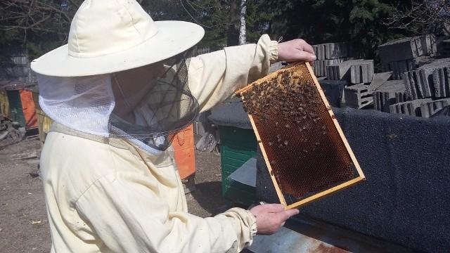 Swój projekt zgłosiło brzezińskie koło pszczelarzy.