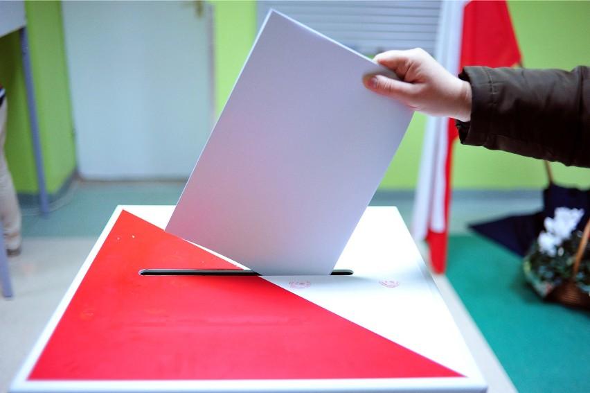 Wyszukiwarka umożliwia znalezienie kandydatów w wyborach parlamentarnych 2019