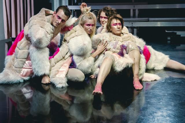 """""""Więcej niż jedno zwierzę""""   spektakl   reżyseria Robert Wasiewicz   Teatr Studio"""