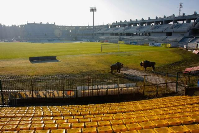 2011 rok. Stadion w trakcie budowy. Kibice jeszcze oglądali mecze ze starych trybun, ale po drugiej stronie boiska można było oglądać nowo wybudowane.