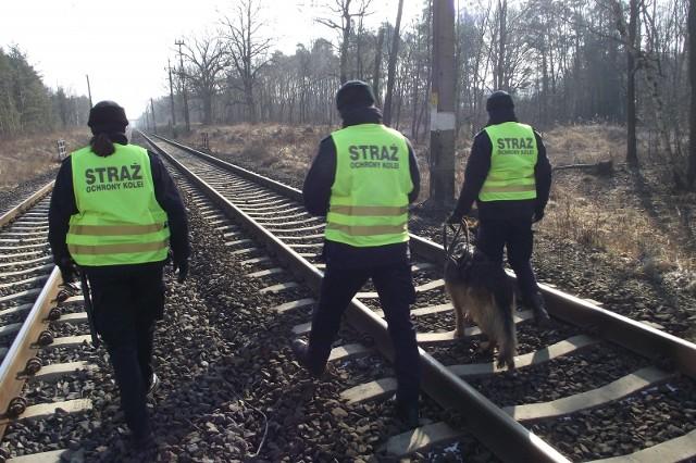 W Zielonej Górze na szlaku kolejowym Zielona Góra Główna - Nowogród Osiedle funkcjonariusze Straży Ochrony Kolei ujęli trzech 13-letnich chłopców, którzy ułożyli przeszkodę na torze czynnym dla przejazdów pociągów