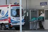 Spada liczba zakażeń koronawirusem, ale liczba zgonów jest bardzo wysoka - blisko 600 ofiar