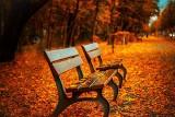 Pogoda na jesień 2020. Złota polska jesień i babie lato, ale czekają nas deszcze, mgły i spadek temperatury. Prognoza długoterminowa