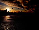 Niezwykłe zdjęcia z półwyspu - zachwycające widoki znad morza. Zobacz, jaki piękny jest Bałtyk w blasku słońca