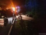 Wypadek Jełowa. Kierowca BMW potrącił jelenia na drodze krajowej nr 45