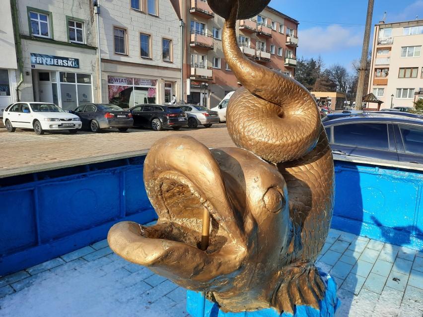 Złota rybka to, czy też delfin? A czy to ważne