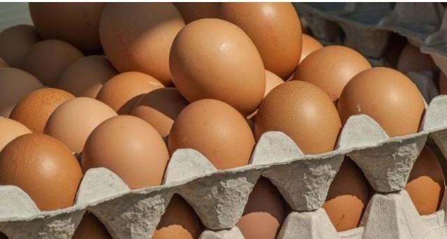 Jajka z salmonellą trafiły do sieci sklepów