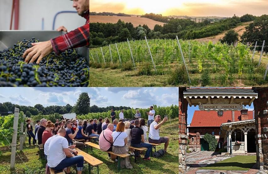 Wino kojarzymy przede wszystkim z Francją, Włochami,...
