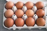Salmonella w jajkach z Biedronki! GIS ponownie ostrzega - sprawdź, czy masz wycofane partie! [27.03.2019 r.]