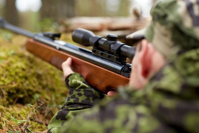 Dwie młode samice wilków zostały odstrzelone w sobotę, 6 marca.