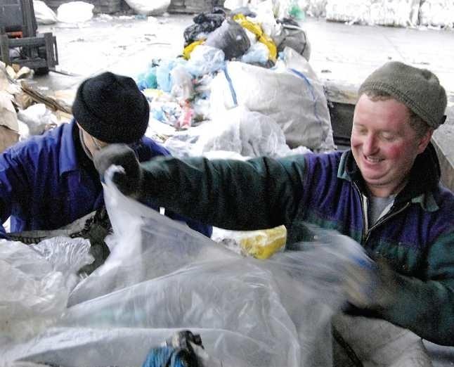 Pracownicy firmy Polmak Recycling sortują skupioną makulaturę.