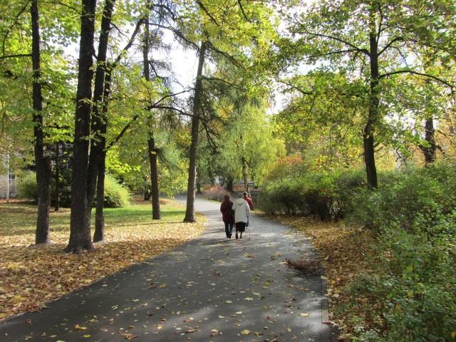 Jesień właśnie się rozpoczęła, liście drzew zmieniają kolor, a dni stają się coraz chłodniejsze. Na razie jednak możemy cieszyć się ładną pogodą, warto więc wybrać się na jesienny spacer. W galerii znajdziecie krótki opis poznańskich parków i wybranych miejsc w Poznaniu, do których warto wybrać się tej jesieni.Sprawdź -->