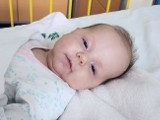 Zielona Góra. Coraz mniej czasu. Mała Ania Orłowska potrzebuje naszej pomocy! Do drogiego leku brakuje jeszcze 1,3 mln zł