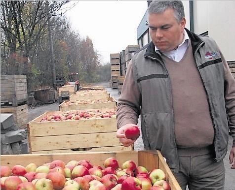 Wojciech Klimkiewicz, sadownik z Wtelna (pow. bydgoski), sprzedał jabłka m.in. do Hongkongu. Na  brak odbiorców nie narzeka