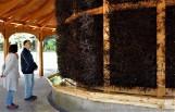 Nowy Sącz. W mieście powstanie tężnia solankowa, udało się zdobyć dofinasowanie. Obiekt będzie magnesem na turystów?