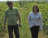 Plantatorzy porzeczek narzekają na bezduszne przepisy towarzystw ubezpieczeniowych