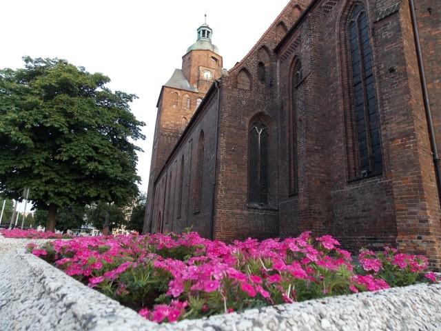 Tak wyglądają dziś kwietniki koło katedry