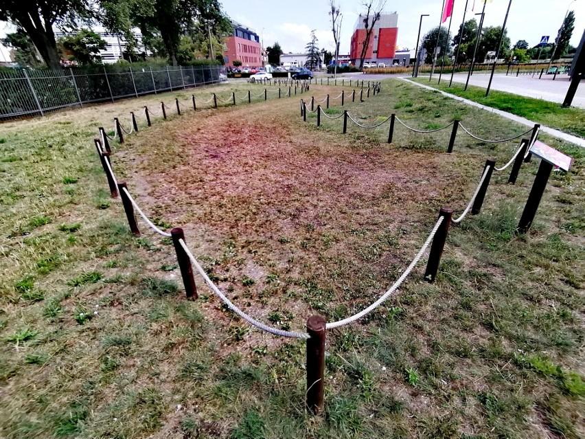 """Trójmiejski oddział """"Zielonej Fali"""", jednej z organizacji..."""