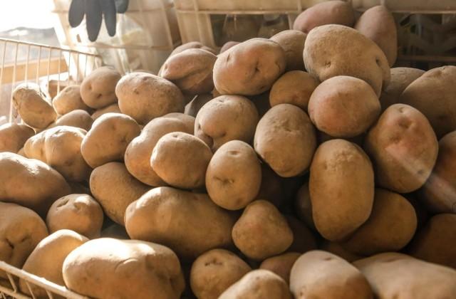 Już wkrótce będziemy otrzymywać czytelne informacje z jakiego kraju pochodzą ziemniaki
