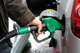 Ceny paliw. Tempo podwyżek na stacjach najwyższe od lat