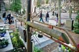 """Kontrowersje wokół opłat na cmentarzach w Gdyni """"To zdzierstwo"""" – pisze Czytelnik. Jakie są stawki?"""