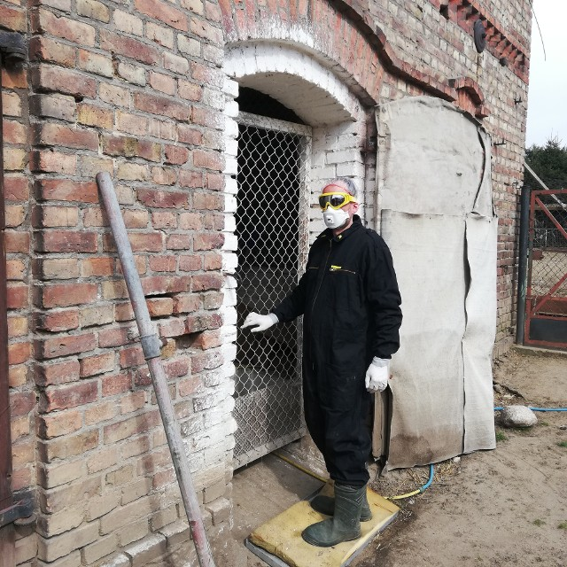 Mimo, że mieszkańcy Muszkowa przestrzegali środków ostrożności, ich drób będzie zagazowany. Bo w fermie indyków odkryto ognisko wtórne ptasiej grypy. Na zdjęciu pan Krzysztof w specjalnym stroju, w jakim wchodził do swojego kurnika.