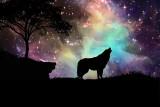 Horoskop codzienny na piątek 14 maja 2021 roku dla każdego znaku zodiaku. Wróżba na dziś dla Barana, Byka, Bliźniąt, Raka, Ryb, Lwa, Wodnika