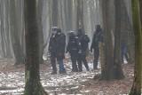 """""""Stop wycince drzew w Starym Gaju!"""". Zobacz zdjęcia ze ''spaceru"""""""
