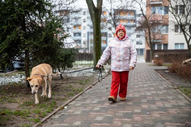 Pani Marianna Radzewicz z Misiem znają się już 17 lat. Pies uwielbia wychodzić na długie spacery, jeść żeberka i towarzyszyć swojej pani. Kiedy jej nie ma w domu tęskni za nią, a ona za nim. Razem tworzą duet idealny.