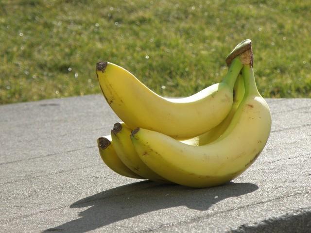 Skórki bananów zawierają wiele minerałów. Można je wykorzystać jako nawóz dla roślin ogrodowych i domowych.