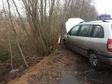 Wypadek w miejscowości Borowskie Żaki. Samochód osobowy uderzył w przydrożne drzewo [ZDJĘCIA]