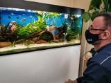 Szkoła specjalna w Białymstoku. Nietypowy prezent od dzielnicowego i akwarystów. Stworzyli uczniom podwodny świat (zdjęcia)