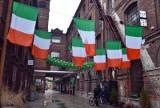 Dni Irlandii w OFF Piotrkowska Center - jakie atrakcje czekają łodzian i gości z okazji dnia świętego Patryka?