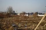 Strażnicy drzew czekają na informacje o wycinkach w Rzeszowie