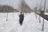 Do Łodzi napływa arktyczne powietrze. W weekend chwyci siarczysty mróz! Prognoza pogody